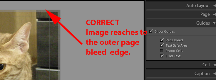 bleed_edge_with_pic_zoom.png