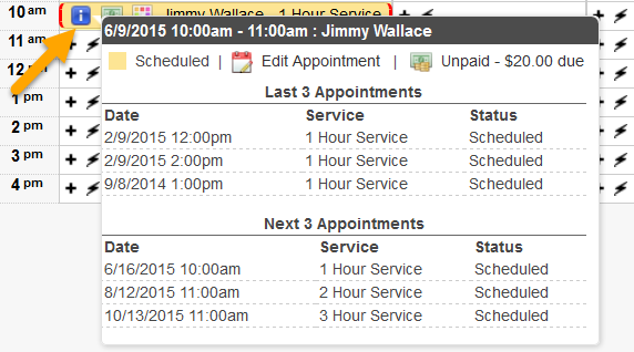 What_doe_the_i_icon_on_the_appointment_grid_mean_image.png