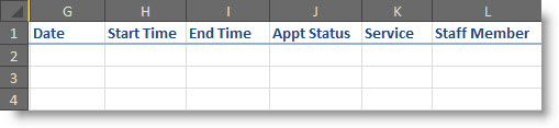 add_appt_data_in_separate_columns.jpg