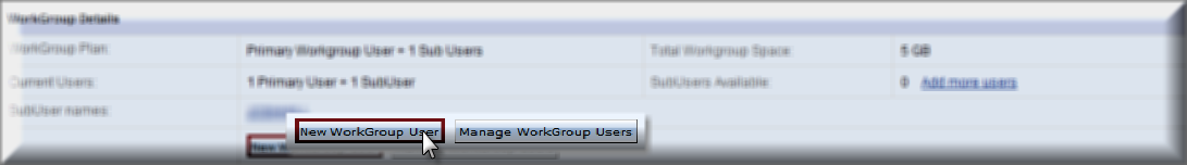 new_workgroup_user.png